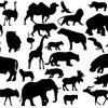 【生物多様性】人間に他の動物を殺す権利はあるのか?