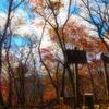 11月の紅葉ハイキングにおすすめウェアのご紹介★ byもっちー