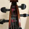 ショック!替えたばかりのチェロの弦が切れる