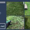 防草シートとクラピアはどちらが防草効果があるのか比較してみた