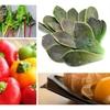 新参者だけど、それぞれが魅力的「新顔野菜」