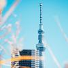 【フォトウォーク】浅草&東京タワー【ひとり】 #1