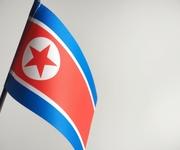 新型ウイルスに言及した北朝鮮保健相の「ある発言」に、中国で大きな反響が
