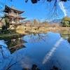 勧修寺の氷室池(京都府京都)