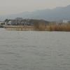 ブラックバス釣行記 琵琶湖 2014年3月29日