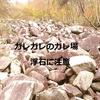 電車で行く!武奈ヶ岳(イン谷口~西南陵)アクセスと立ち寄り情報