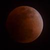 皆既月食@観測と写真