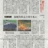 西日本新聞37話 こんなに簡単に炭ができるなんて