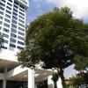 ジム : Fitness First Menara Manulife and Paradigm Mall, Kuala Lumpur