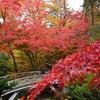 紅葉散歩・香雪園(1)…