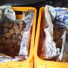 ジャガイモを片付けろ(2) 出た芽は摘め