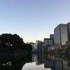 ジョギング24.42km・懲りずに早朝皇居ラン(しかもロング)