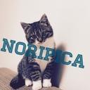 NORIPICA blog