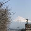 【チャリで帰宅してみた】続・四国自転車旅  8日目 2017/3/29 【富士~横浜】