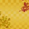 【歌舞伎】新橋演舞場 初春歌舞伎公演  麗禾ちゃん 勸玄くんの可愛いさにキュンキュン