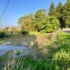 弁財天池緑地の池(茨城県水戸)