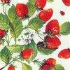 美味しく若返る🍓苺とローズマリーの野菜スムージー - Keep Young and Beautiful -
