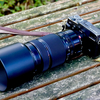 X-Pro2 + XF100-400mmでISO設定を検証