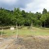 安塚町立行野小学校