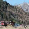 ウイングヒルズと長良川鉄道