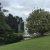 チェンマイの植物園