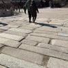 世界遺産の昌徳宮(チャンドックン)
