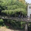京都一周トレイル 東山コースを歩く(後半)