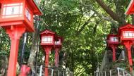 『照島神社』いちき串木野市が誇る屈指のパワースポット〔鹿児島〕