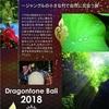 7月は、バリにて新月神楽!!!Dragontone Bali 2018