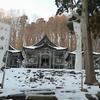 2月神社巡り 自然エネルギー採取
