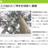 許すまじ!樹齢500年の神社のご神木を薬で枯らして「銘木」として別の神社に販売する輩【四国】