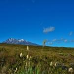 「トンガリロ アルパイン クロッシング(Tongariro Alpine Crossing)」 ~まずは起点のマンガテポポ(Mangatepopo)側から