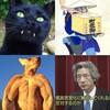 【黒猫・飛脚・有袋類・〒】運送会社を比較する回