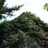国内旅行回想録1991年〜広島・葦嶽山(日本ピラミッド!)