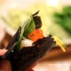 うちの手巻き寿司。すし酢は簡単に美味しく作れるからもう買いません。