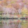 ◆10/21        鶴間池③…鶴間池小舎周辺にて・再び