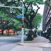 セントラルパシフィックカレッジ登校初日#ハワイ留学