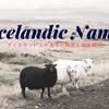 アイスランドの名字の由来を徹底解明!なぜsonばかり?