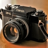フイルム写真館 CANON F-1N~その4『昭和の日に』