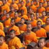 5月21日は「世界瞑想の日」みんなで瞑想しましょう!!