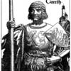 円卓の騎士 ガレス卿 愛されるべき優男