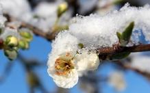 編集部お勧め! 3月に行きたい全国日本語教育関連イベント6選