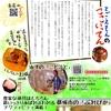 ニュースレター10月号発行
