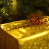 どうしても欲しい・・・クリスマスプレゼント【私編】