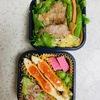 トンテキ・目玉焼きの両面焼き弁当と水栽培