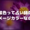 紫色って占い師のイメージカラーなの?(もりちゃのギモン)