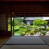 京都・祇園 - 両足院 臨池亭から望む半夏生の庭