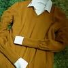 ユニクロ「エクストラファインメリノセーター」と「フランネルチェックシャツ」を買ってヘビロテしたので着用感をレポします。2017年秋冬