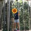 2018夏休みに六甲山フィールドアスレチックに家族で行って来ました