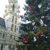 ブリュッセルのクリスマスツリー